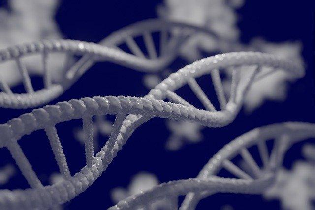 ¿Es la dermatitis atópica hereditaria?